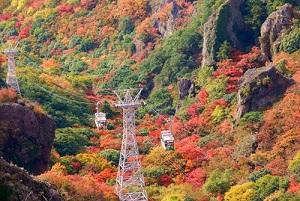 寒霞渓 紅葉
